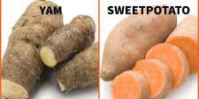 yams vs sweet potatoe